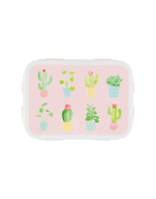 Brooddoos cactus pastel