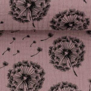 Tetra oude roze blaasbloem